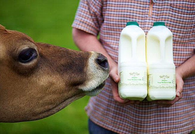 Roskillys Cornish milk