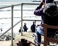 5 der besten Strände für Hunde in Cornwall